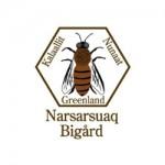 Narsarsuaq Bigård